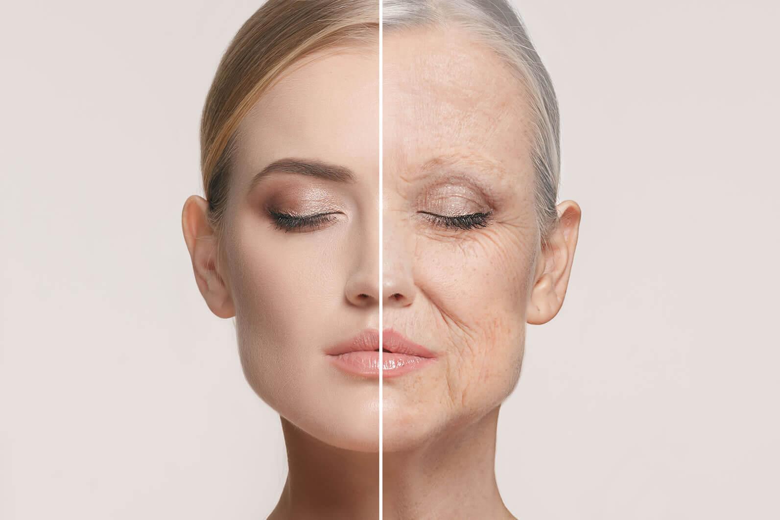 病気や老化の予防効果